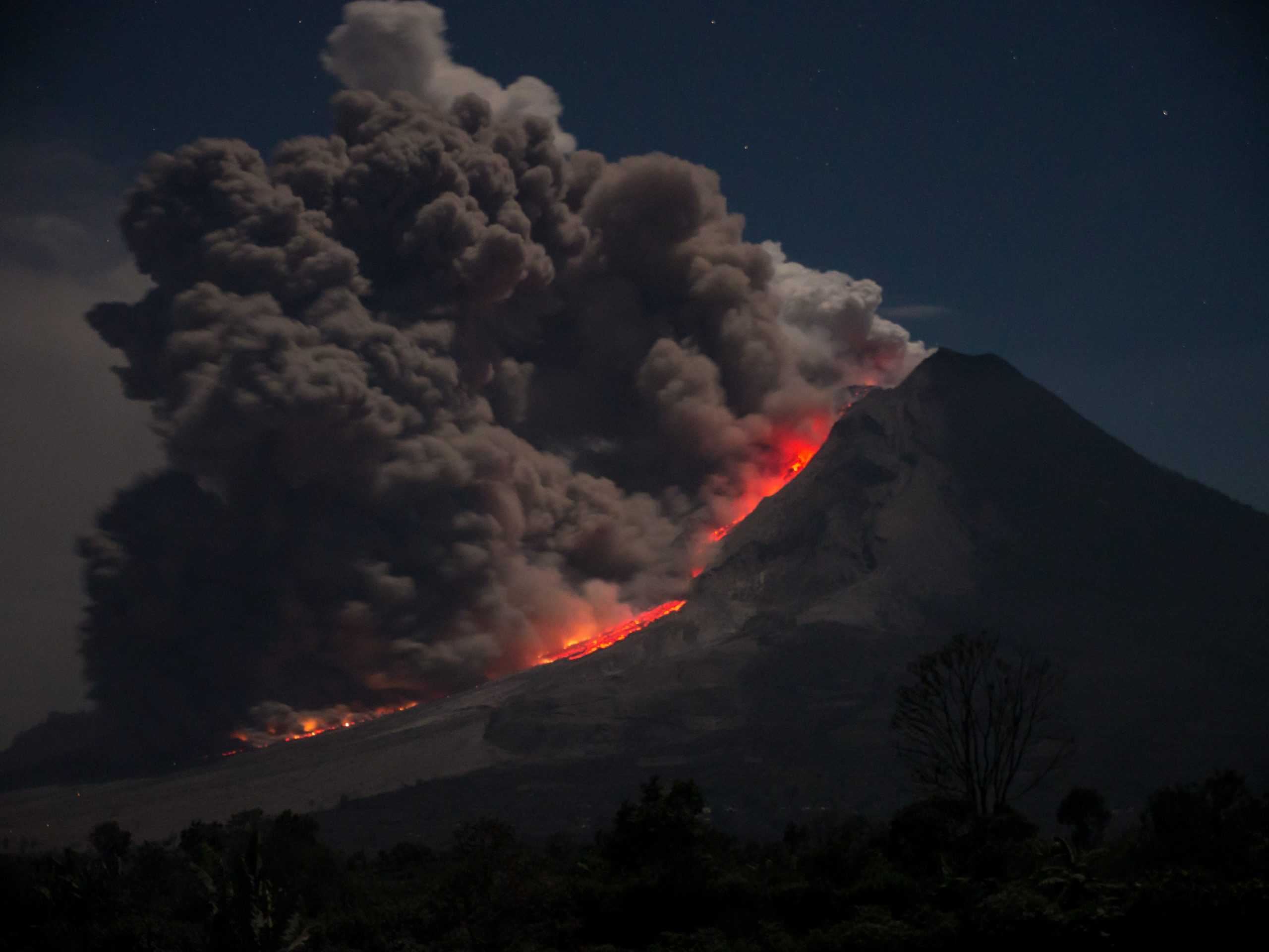 北 富士 演習 場 火事